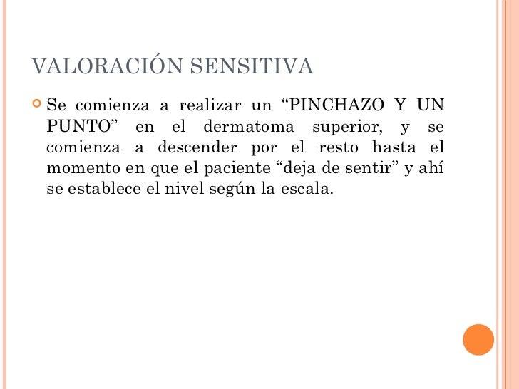 BIBLIOGRAFÍA Lesión Medular Traumática; Escrito por José  M. Climent Barberá, Rosalía López Arteaga y  Virgilio Santo Sao...