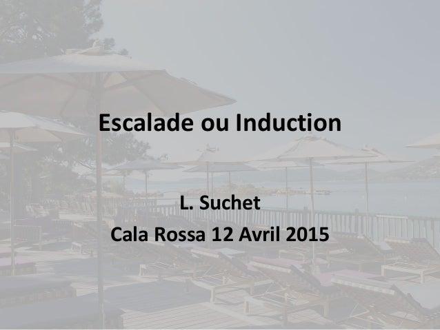 Escalade ou Induction L. Suchet Cala Rossa 12 Avril 2015