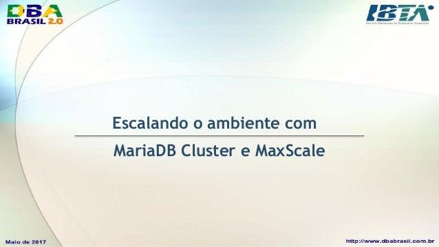 MaxScale