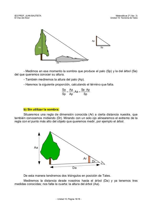 Escalas for Cuanto mide un arbol