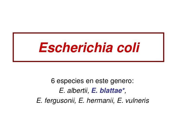Escherichia coli     6 especies en este genero:        E. albertii, E. blattae*,E. fergusonii, E. hermanii, E. vulneris