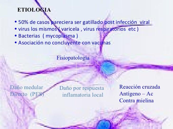 ETIOLOGIA <ul><li>50% de casos pareciera ser gatillado post infección  viral </li></ul><ul><li>virus los mismos ( varicela...