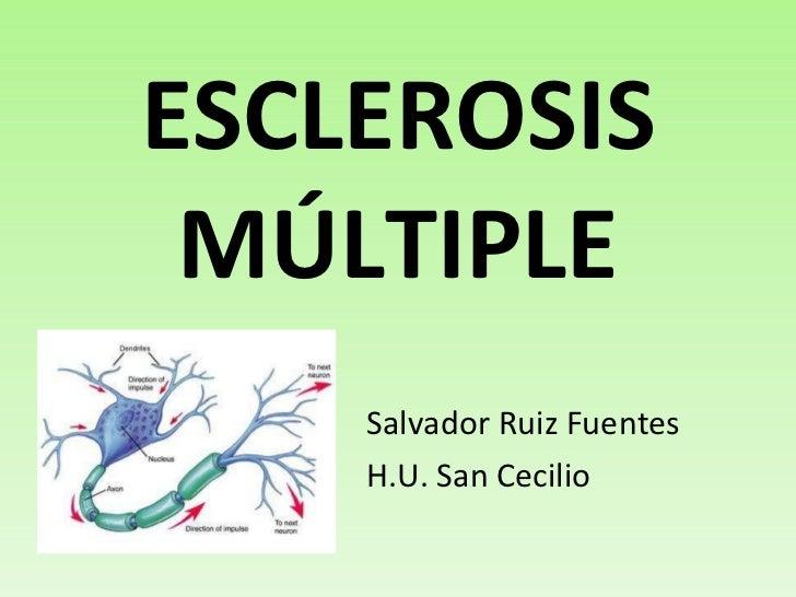 ESCLEROSIS MÚLTIPLE <ul><li>Salvador Ruiz Fuentes </li></ul><ul><li>H.U. San Cecilio </li></ul>