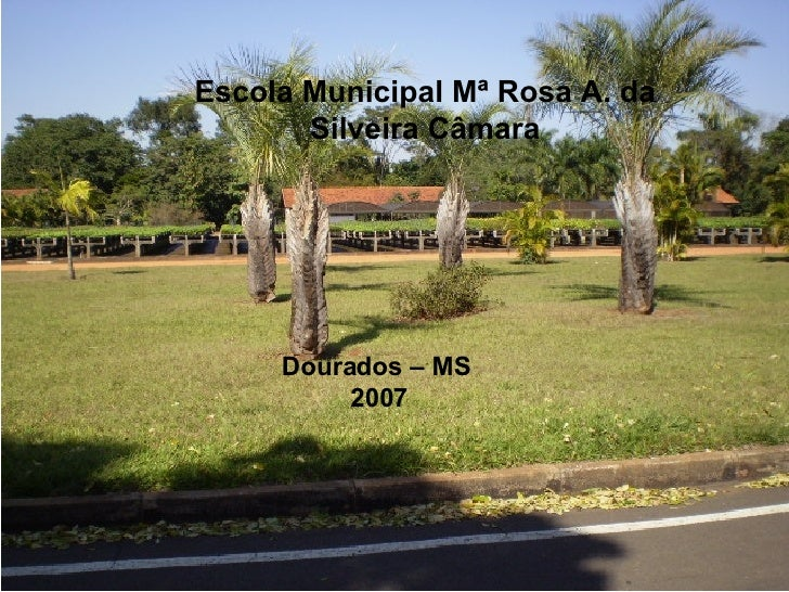 Dourados - MS - 2007 Escola Municipal Mª Rosa A. da Silveira Câmara Dourados – MS  2007