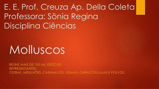 E. E. Prof. Creuza Ap. Della Coleta  Professora: Sônia Regina  Disciplina Ciências  Molluscos  REÚNE MAIS DE 150 MIL ESPÉC...