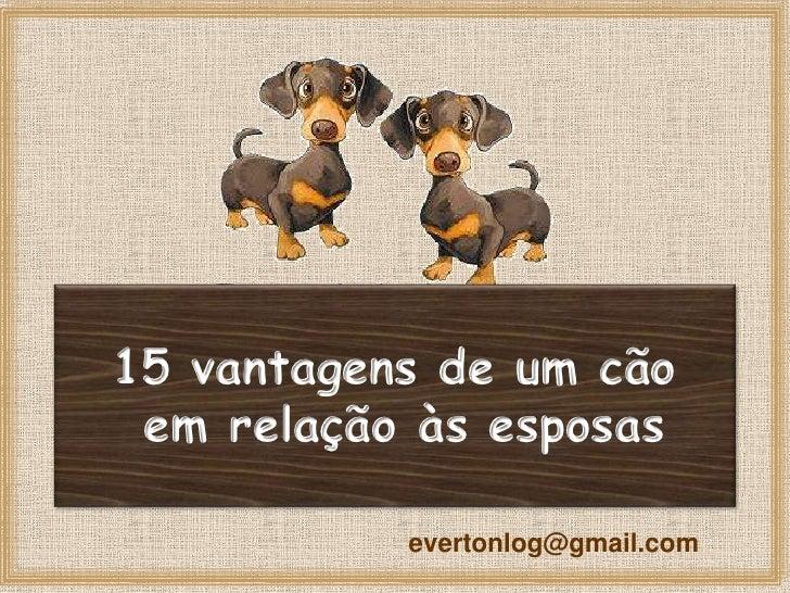 15 vantagens de um cão  em relação às esposas             evertonlog@gmail.com