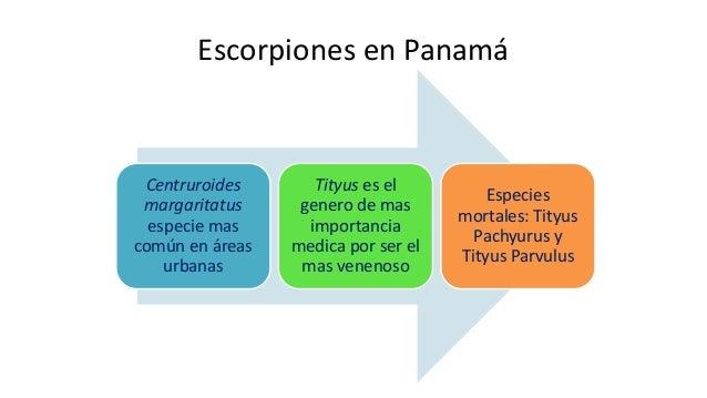 El escorpionismo puede manifestarse únicamente con síntomas locales, o simultáneamente locales y sistémicos. De acuerdo co...