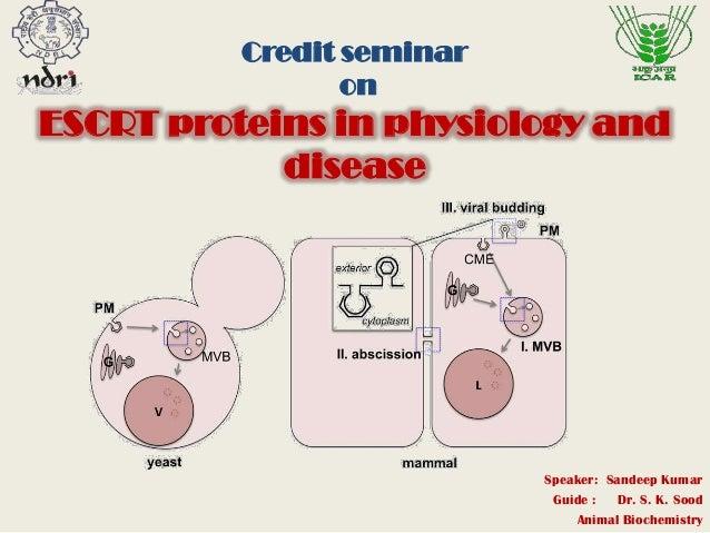 Credit seminar on ESCRT proteins in physiology and disease Speaker: Sandeep Kumar Guide : Dr. S. K. Sood Animal Biochemist...