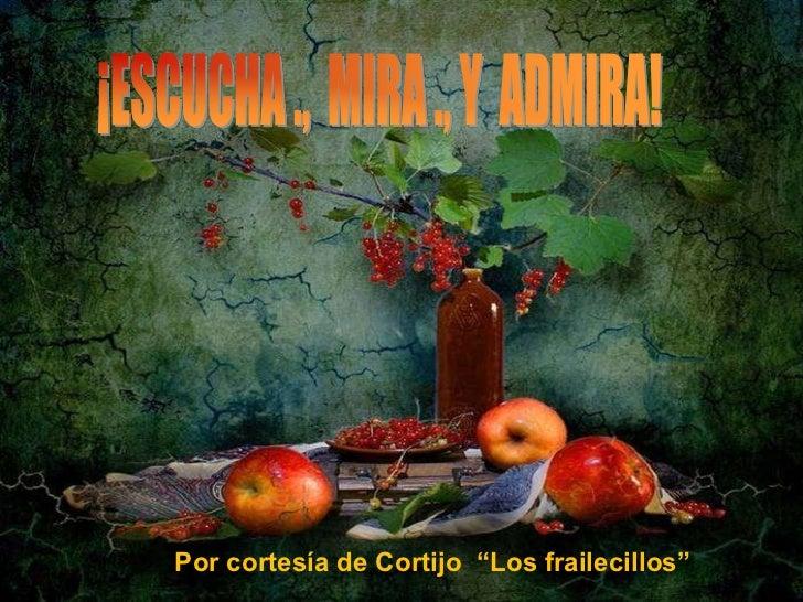 """Por cortesía de Cortijo """"Los frailecillos"""""""