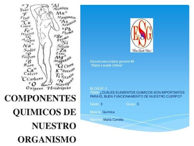 Elementos qumicos importantes para el cuerpo humano urtaz Choice Image