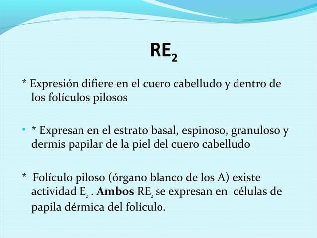 RE2* Expresión difiere en el cuero cabelludo y dentro delos folículos pilosos• * Expresan en el estrato basal, espinoso, g...