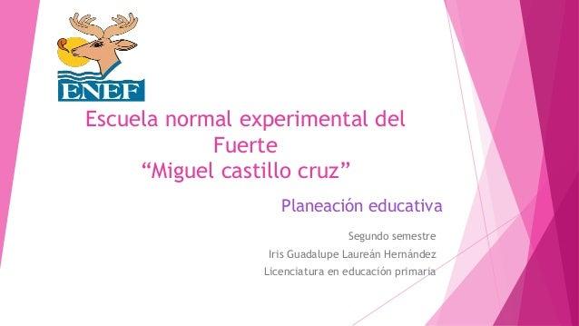 """Escuela normal experimental del Fuerte """"Miguel castillo cruz"""" Segundo semestre Iris Guadalupe Laureán Hernández Licenciatu..."""