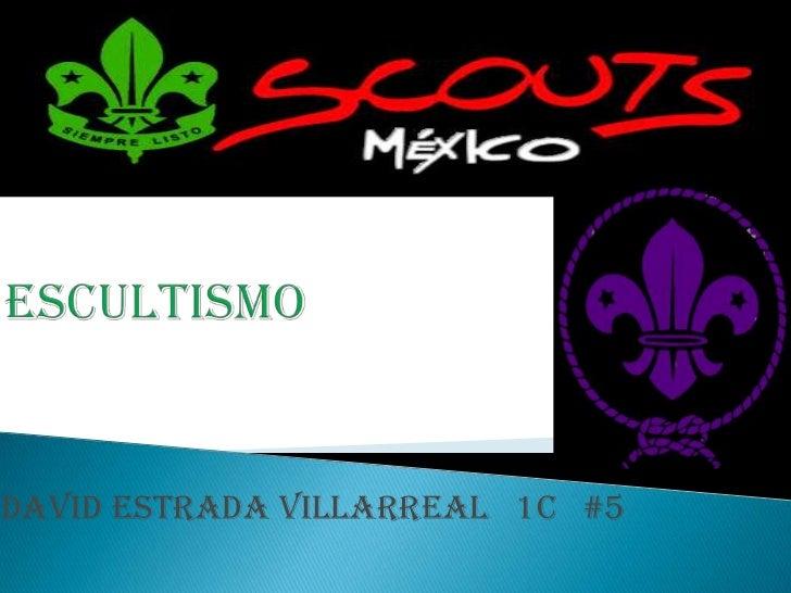 David Estrada Villarreal 1C #5