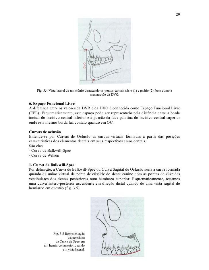 29    Fig. 3.4 Vista lateral de um crânio destacando os pontos carnais násio (1) e gnátio (2), bem como a                 ...