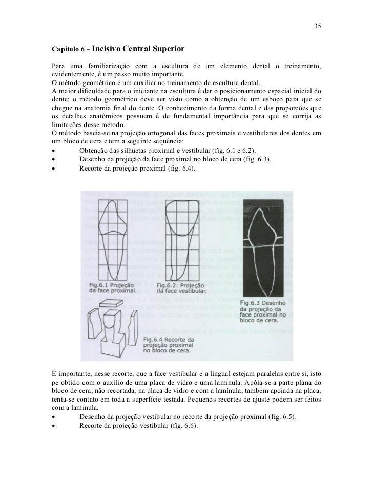 35Capítulo 6 – Incisivo Central SuperiorPara uma familiarização com a escultura de um elemento dental o treinamento,eviden...