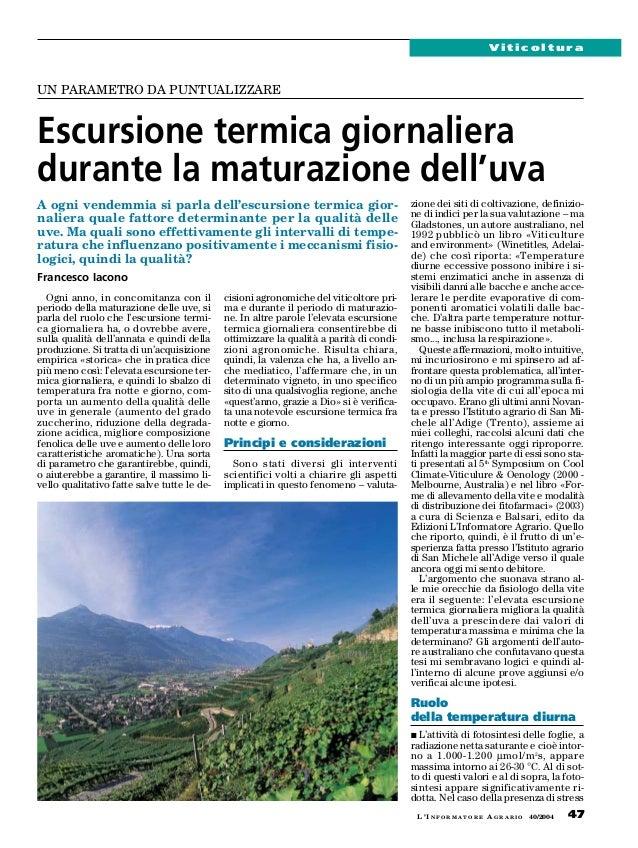 ViticolturaUN PARAMETRO DA PUNTUALIZZAREEscursione termica giornalieradurante la maturazione dell'uvaA ogni vendemmia si p...
