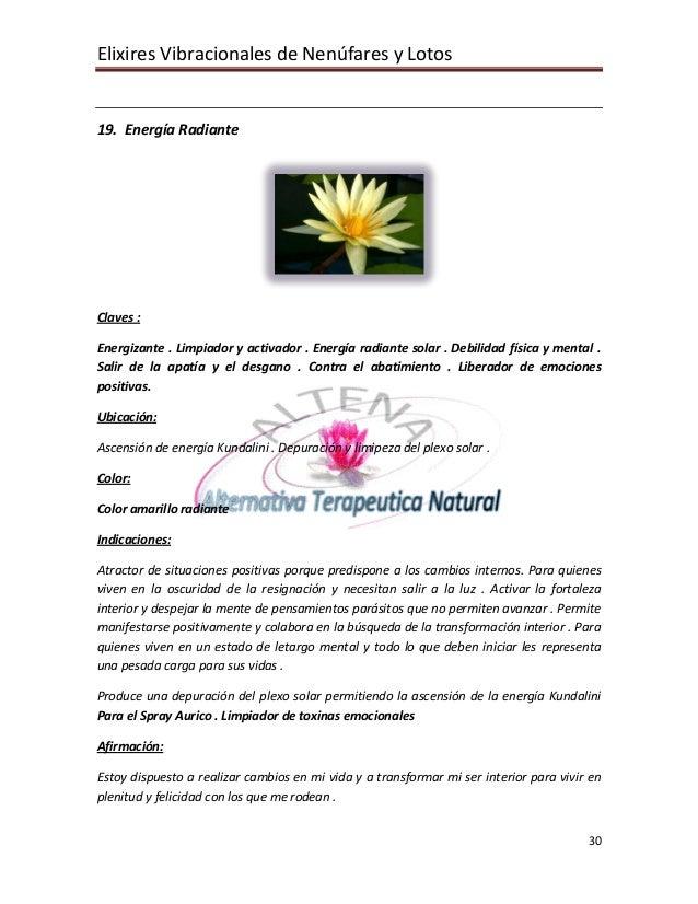 Elixires Vibracionales de Nenúfares y Lotos   19. Energía Radiante     Claves :  Energizante . Limpiador y activador . Ene...
