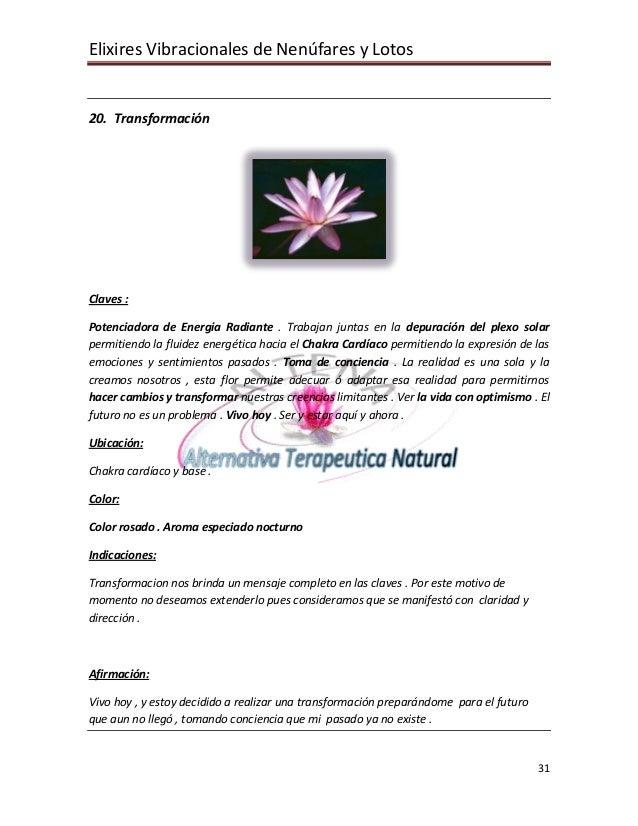 Elixires Vibracionales de Nenúfares y Lotos   20. Transformación     Claves :  Potenciadora de Energia Radiante . Trabajan...