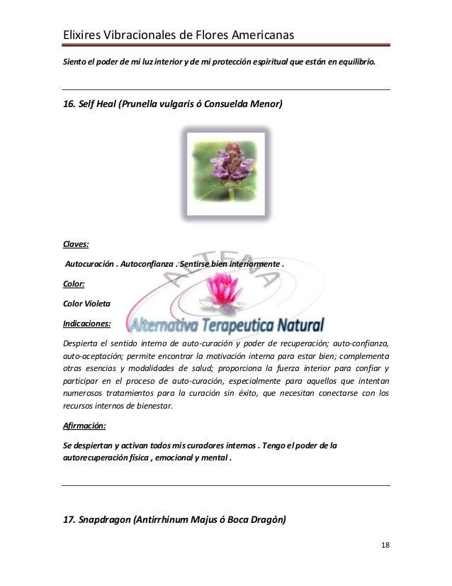 Elixires Vibracionales de Flores Americanas 18 Siento el poder de mi luz interior y de mi protección espiritual que están ...