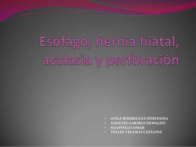 • • • •  AVILA RODRIGUEZ STHEPANIA ANGELES GARIBAY OSWALDO SUASTEGUI OMAR TELLEZ VELASCO CATALINA
