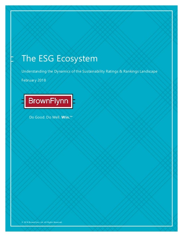 © 2018 BrownFlynn Ltd. All Rights Reserved. Do Good. Do Well. Win.™ The ESG Ecosystem Understanding the Dynamics of the Su...