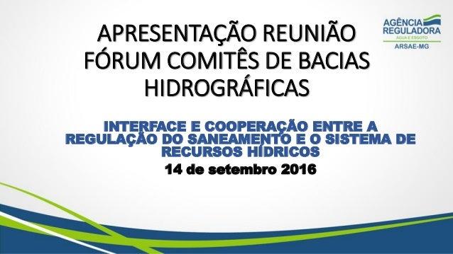 APRESENTAÇÃO REUNIÃO FÓRUM COMITÊS DE BACIAS HIDROGRÁFICAS INTERFACE E COOPERAÇÃO ENTRE A REGULAÇÃO DO SANEAMENTO E O SIST...