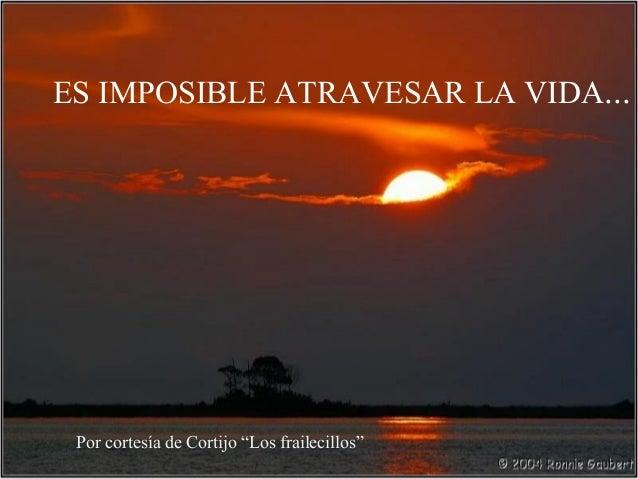 """ES IMPOSIBLE ATRAVESAR LA VIDA...  Por cortesía de Cortijo """"Los frailecillos"""""""
