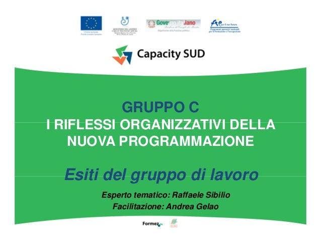 GRUPPO C I RIFLESSI ORGANIZZATIVI DELLA NUOVA PROGRAMMAZIONE Esiti del gruppo di lavoro Esperto tematico: Raffaele Sibilio...