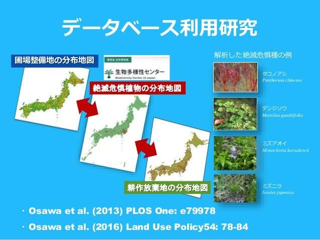 データベース利用研究 ・ Osawa et al. (2013) PLOS One: e79978 ・ Osawa et al. (2016) Land Use Policy54: 78-84 絶滅危惧植物の分布地図 耕作放棄地の分布地図 解析...