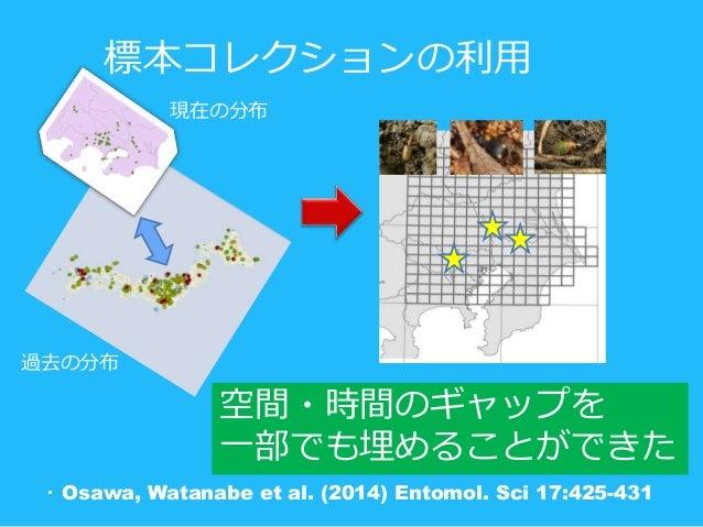 現在の分布 過去の分布 ・ Osawa, Watanabe et al. (2014) Entomol. Sci 17:425-431 空間・時間のギャップを 一部でも埋めることができた 標本コレクションの利用