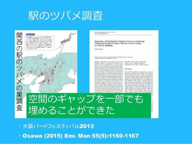 駅のツバメ調査 空間のギャップを一部でも 埋めることができた ・ 大阪バードフェスティバル2013 ・ Osawa (2015) Env. Man 55(5):1160-1167