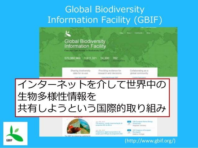 (http://www.gbif.org/) Global Biodiversity Information Facility (GBIF) インターネットを介して世界中の 生物多様性情報を 共有しようという国際的取り組み