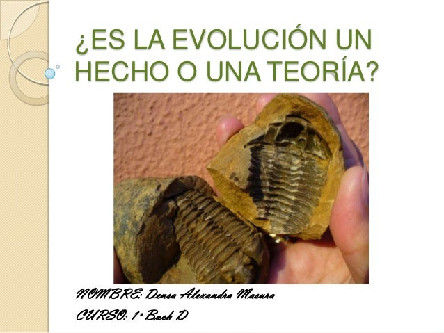 ¿ES LA EVOLUCIÓN UNHECHO O UNA TEORÍA?NOMBRE: Densa Alexandra MasuraCURSO: 1º Bach D