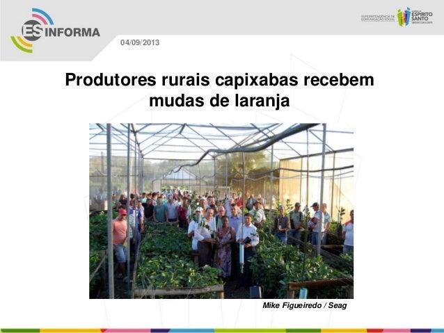 Mike Figueiredo / Seag 04/09/2013 Produtores rurais capixabas recebem mudas de laranja