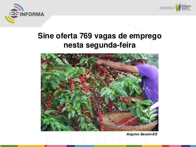 Sine oferta 769 vagas de empregonesta segunda-feiraArquivo Secom-ES