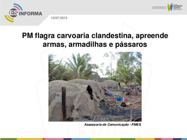 Assessoria de Comunicação / PMES 10/07/2013 PM flagra carvoaria clandestina, apreende armas, armadilhas e pássaros