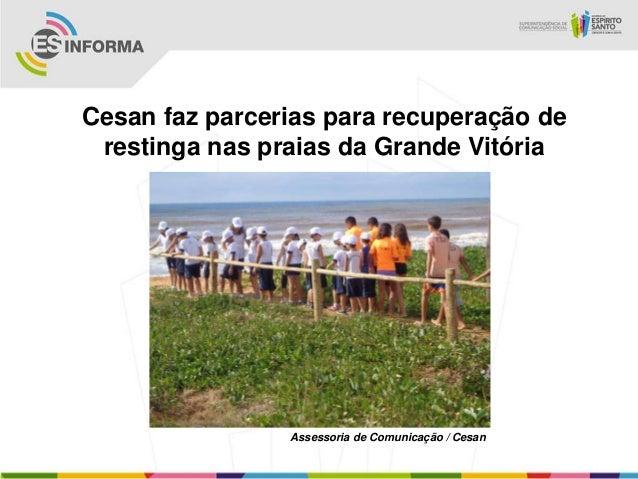 Cesan faz parcerias para recuperação derestinga nas praias da Grande VitóriaAssessoria de Comunicação / Cesan