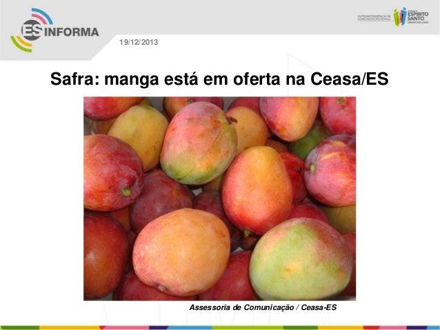 19/12/2013  Safra: manga está em oferta na Ceasa/ES  Assessoria de Comunicação / Ceasa-ES