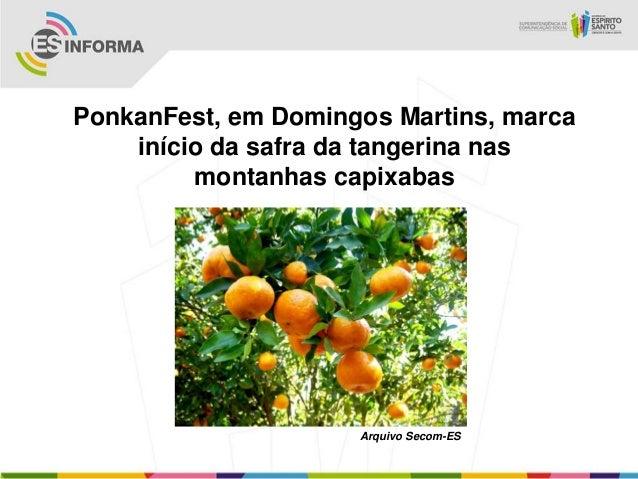 PonkanFest, em Domingos Martins, marcainício da safra da tangerina nasmontanhas capixabasArquivo Secom-ES
