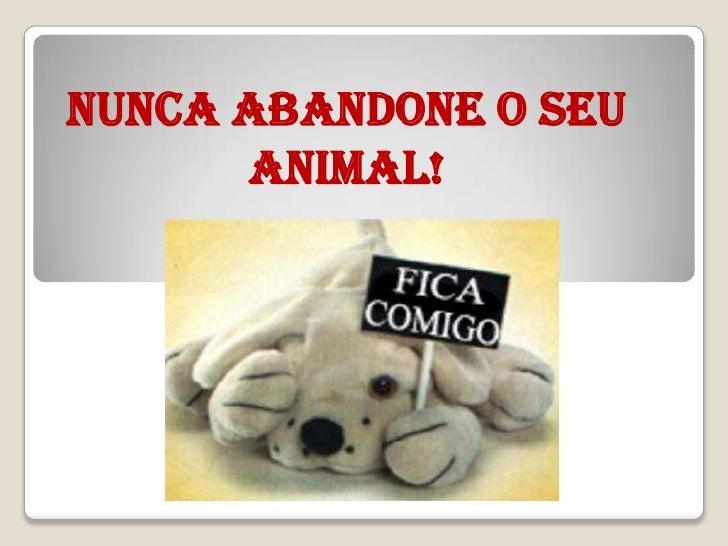 NUNCA ABANDONE O SEU      ANIMAL!