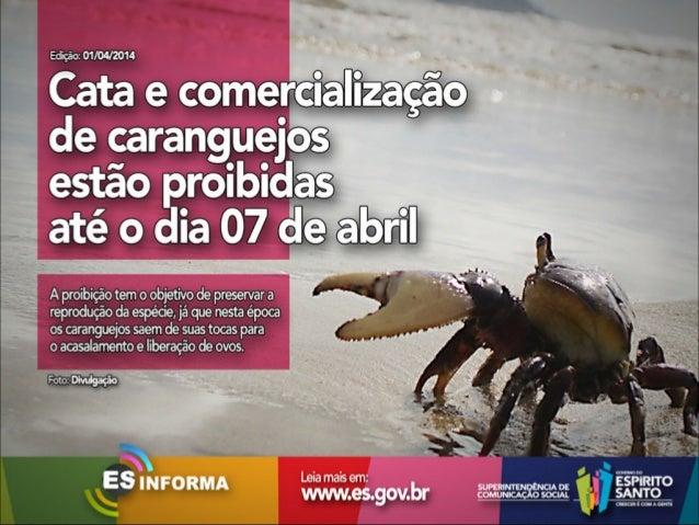 Es Informa Mídia - 01 de abril de 2014