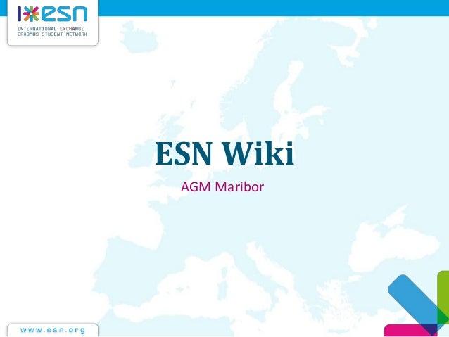 ESN Wiki AGM Maribor