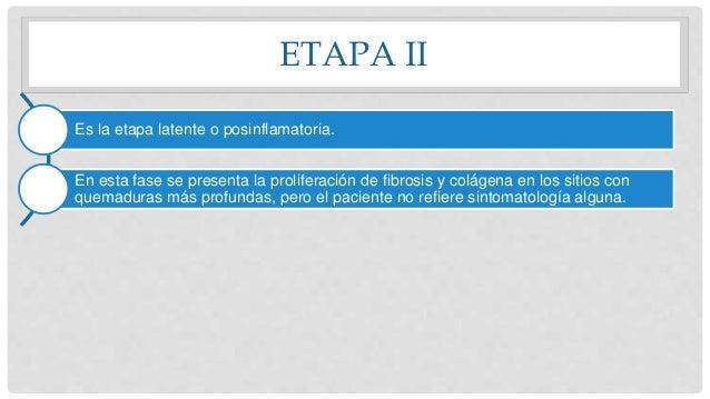 ETAPA II Es la etapa latente o posinflamatoria. En esta fase se presenta la proliferación de fibrosis y colágena en los si...