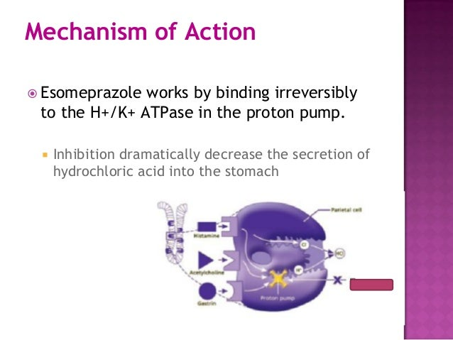 omeprazole mechanism of action pdf