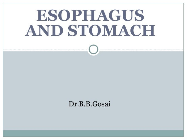 ESOPHAGUS AND STOMACH Dr.B.B.Gosai