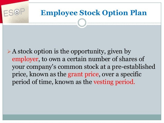 Employee stock options sars