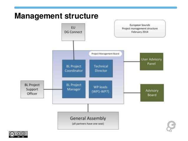 Project Management Governance Structure Template Image