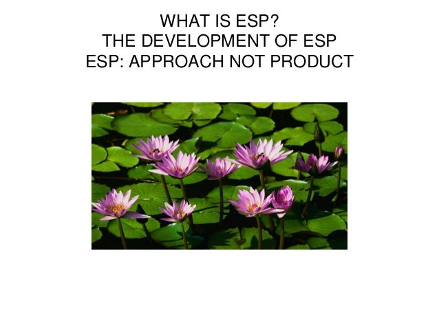 WHAT IS ESP? THE DEVELOPMENT OF ESP ESP: APPROACH NOT PRODUCT