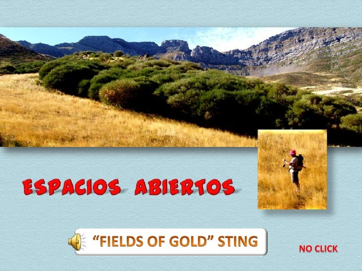 """ESPACIOS  ABIERTOS<br />""""FIELDS OF GOLD"""" STING<br />NO CLICK<br />"""