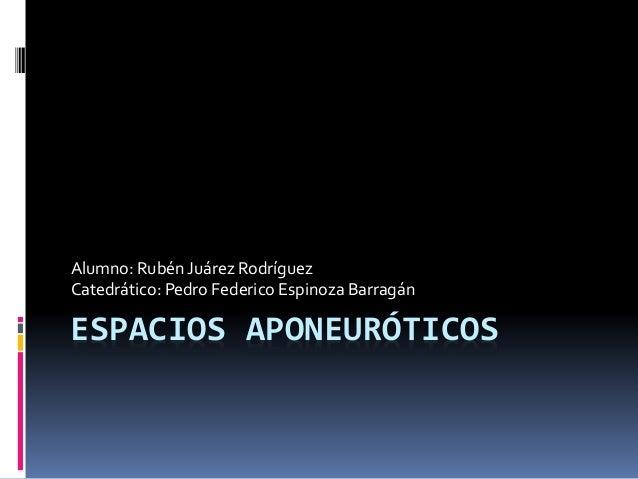 Alumno: Rubén Juárez Rodríguez  Catedrático: Pedro Federico Espinoza Barragán  ESPACIOS APONEURÓTICOS